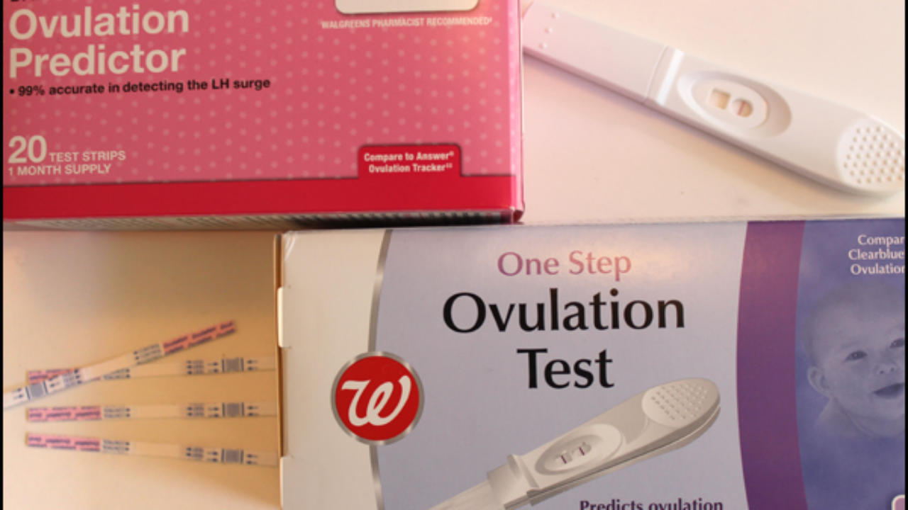 Ovulation test: what they are, how they work and when to start them